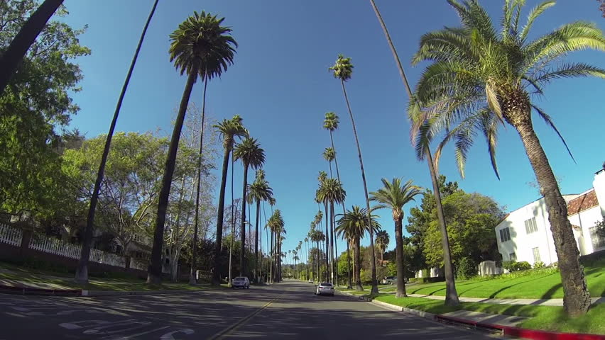 Driving through Beverly Drive in Beverly Hills - HD stock video clip
