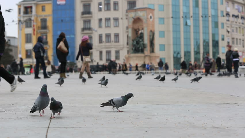 flock pigeon and dove with busy pedestrian walking on the Taksim Square at Istanbul Turkey