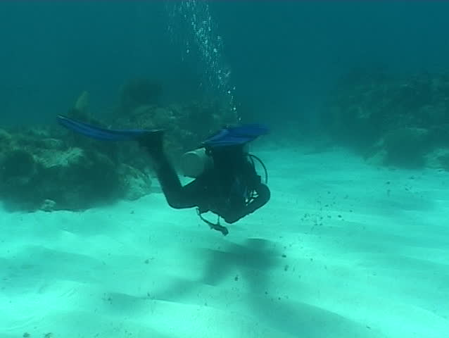diver people underwater video  - SD stock video clip