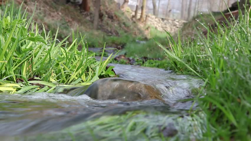 Water roll over rock in creek in forest - HD stock footage clip