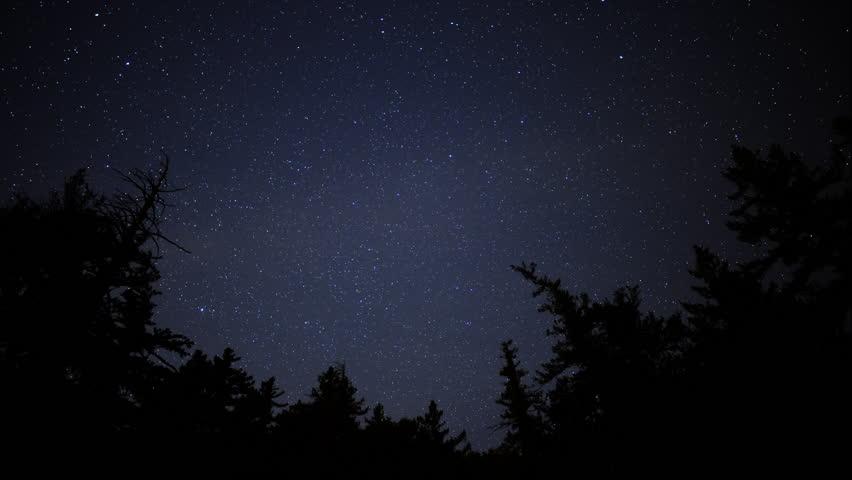 Time Lapse of Starry Sky over Alpine Forest -Tilt Up-