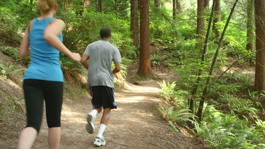 A couple jogging together in the forest, run away from the camera as they continue down the trail - HD stock footage clip