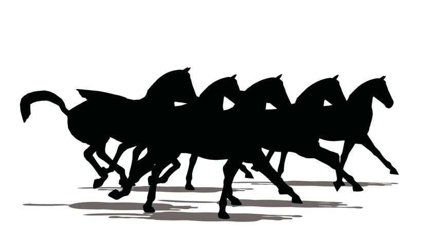 Run of small herd of horses, black silhouette on white background  - HD stock footage clip