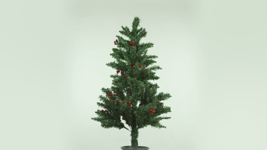 christmas tree isolated on white background cut out full - 4K stock video clip