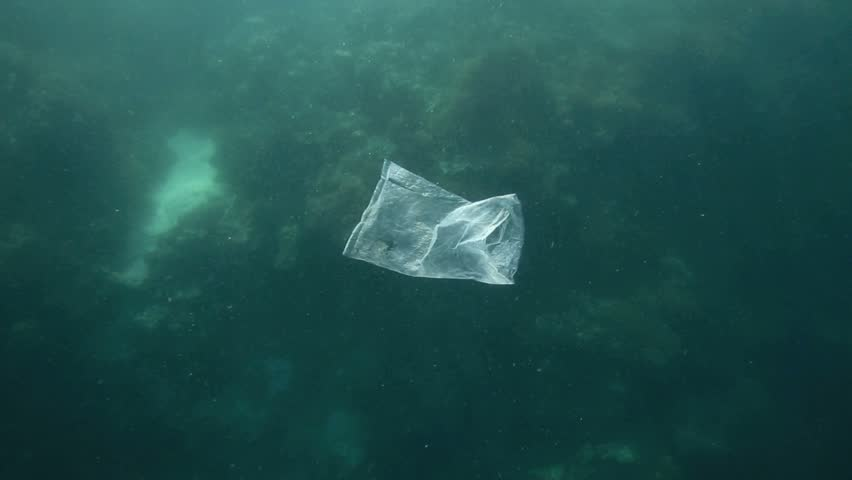 Plastic bag floating underwater over coral reef in Moalboal, Philippines