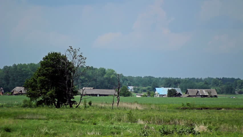 Rural landscape. Large meadows with grazing cattle. One-story houses not far from the river. Day. - HD stock video clip