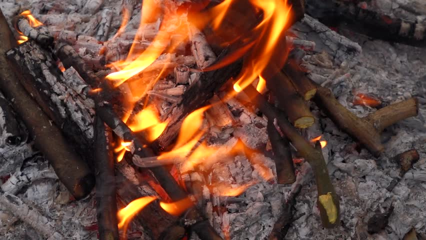 Close up of a campfire and putting some log wood into the fire, native 60fps RX10 video - HD stock video clip