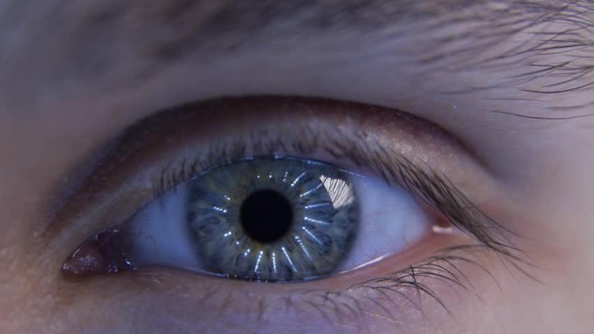 Eye Iris And Pupil Mac...