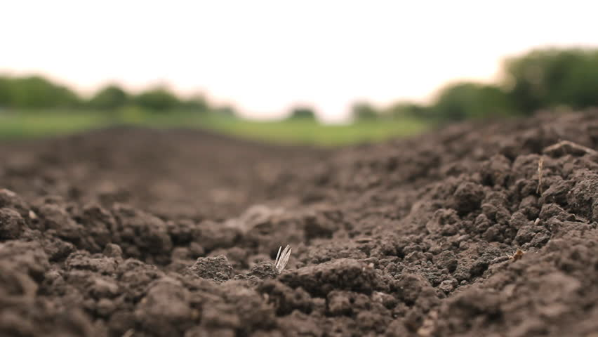 Soil ground land agriculture meadow stock footage video for Soil young s modulus