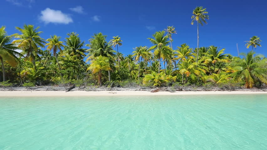 Tropical island, Palm Trees and White Sand