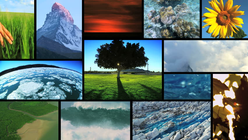 3D video montage environmental images nature life plants ocean diving mountain iceberg - HD stock video clip