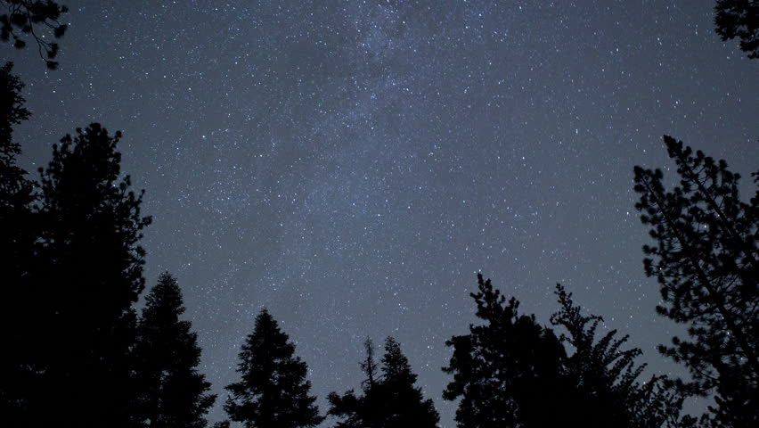4K Time Lapse Pan Right of Stars and Silhouetted Pine Trees at Night In The San Gabriel Mountains National Monument, California
