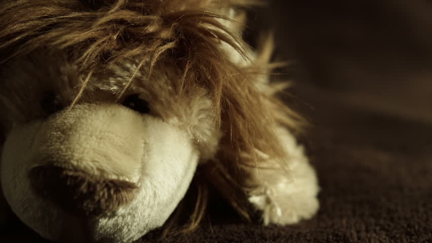 Cuddly toy Lion HD stock footage. A close up shot of a cute and cuddly toy Lion with a dolly camera move.