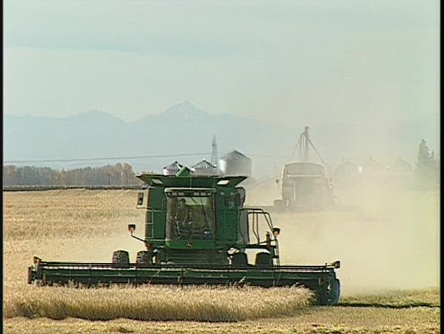 grain harvesters spin around and keeps harvesting. (BetacamSP) - SD stock footage clip
