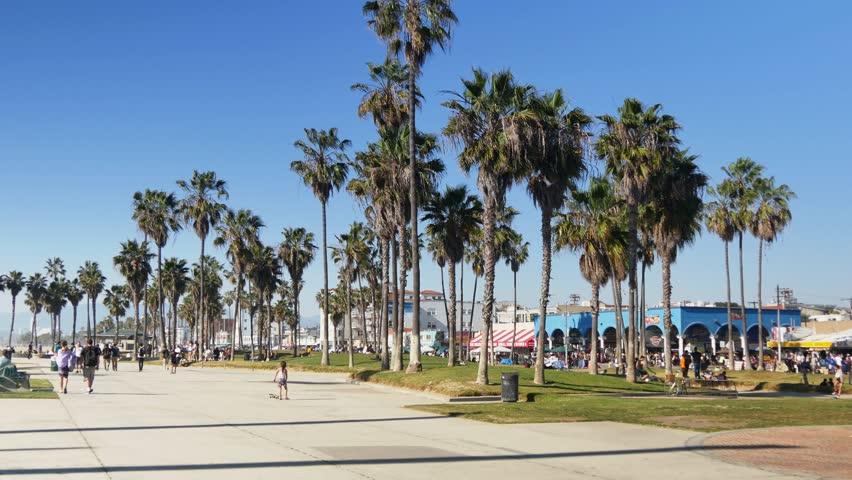 download image venice beach - photo #46