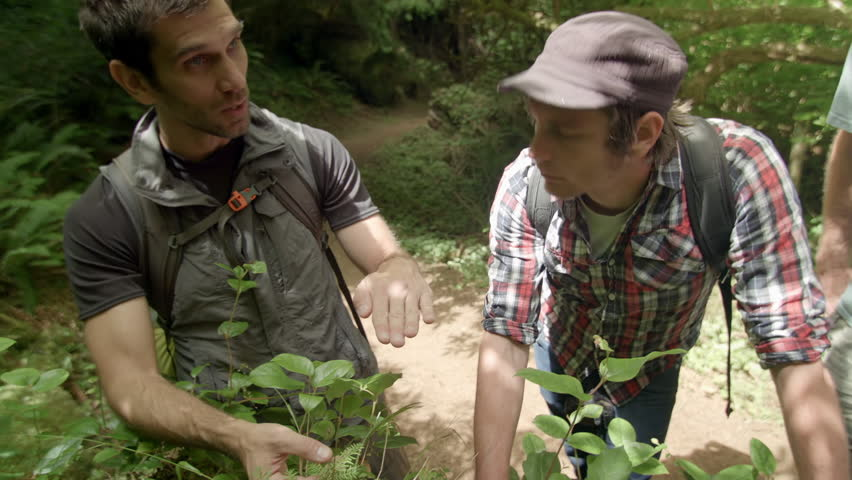 Guide Teaches About Plants In A Forest Of The Pacific Northwest