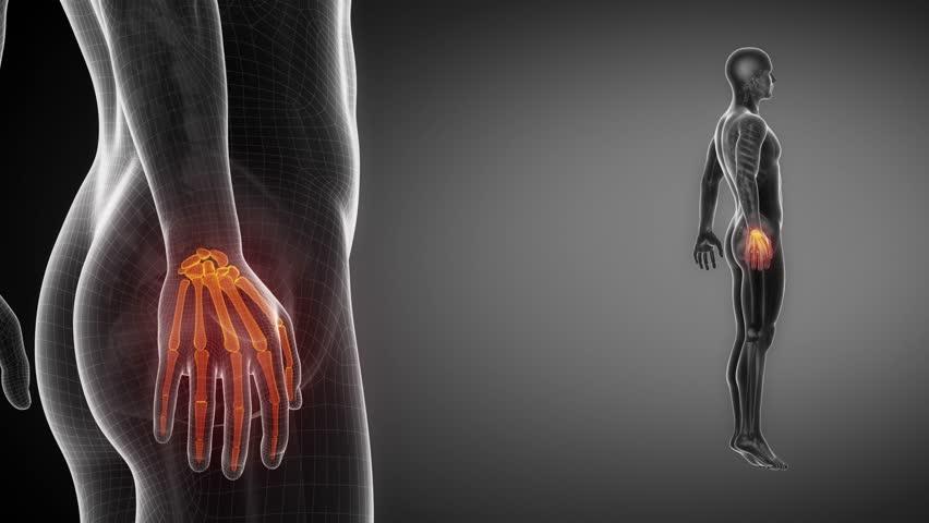 WRIST bone skeleton x-ray scan in black - 4K stock footage clip
