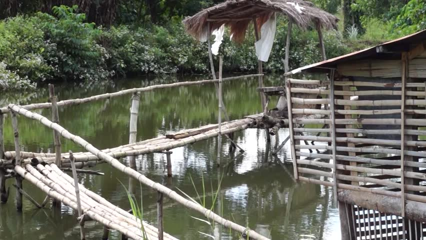 IFUGAO, PHILIPPINES - DECEMBER 24, 2014: Bamboo hut and bamboo bridge inside man-made fish pond