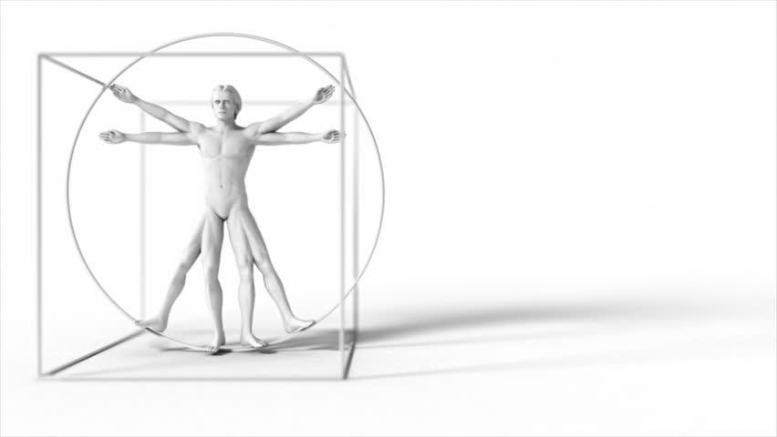 3d rotating Da Vinci man. Seamless loop.
