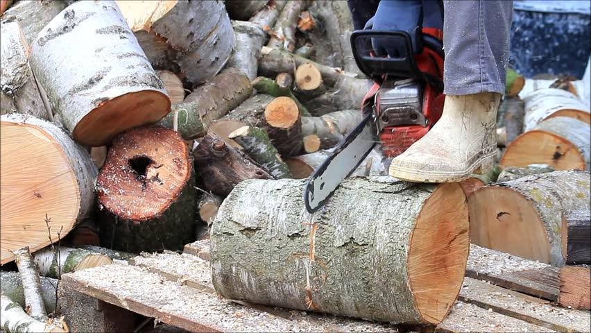 nenets woman cutting firewood - photo #23