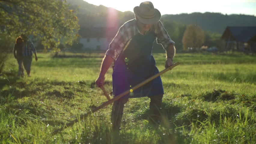 Middle age couple walks on the filed where the farmers are mowing with scythes. Couple on the hike walking on the filed where the grope of farmers are mowing the grass on traditional way with scythes. | Shutterstock HD Video #9426071