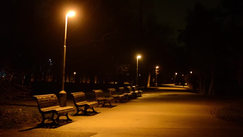 night park - benches and lamps