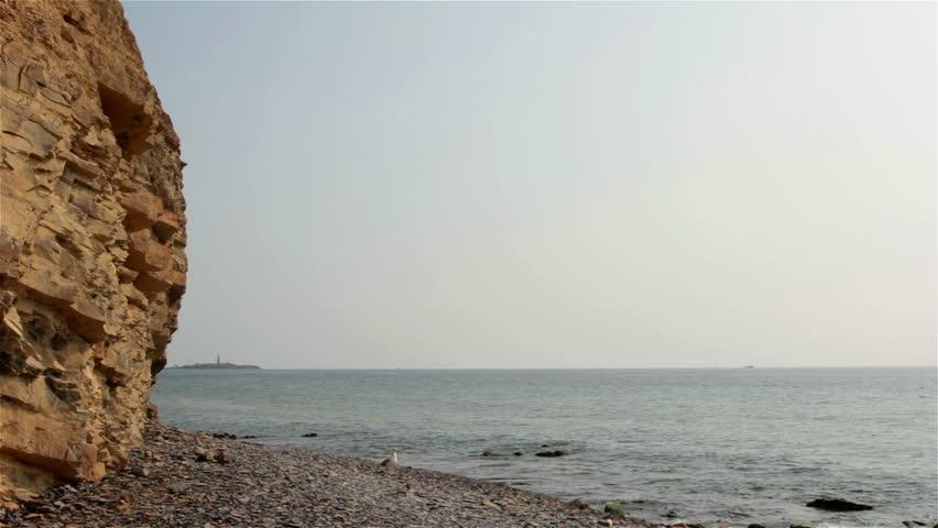Cliff, calm sea, seagulls flying
