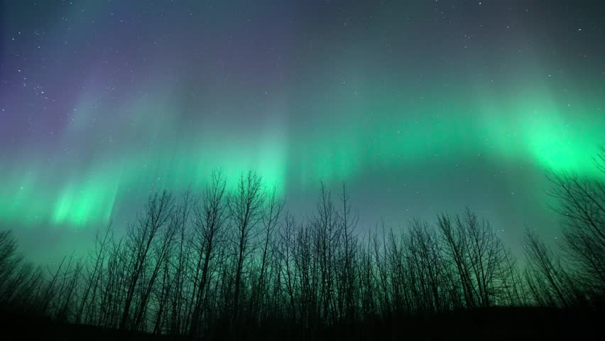 A time lapse clip of the aurora borealis with bare trees in the foreground