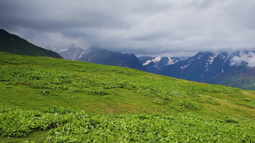 Great view of the green meadows with blue sky at the foot of Mt. Ushba. Upper Svaneti, Georgia, Europe. The main Caucasus ridge. Beauty world. HD video (High Definition)