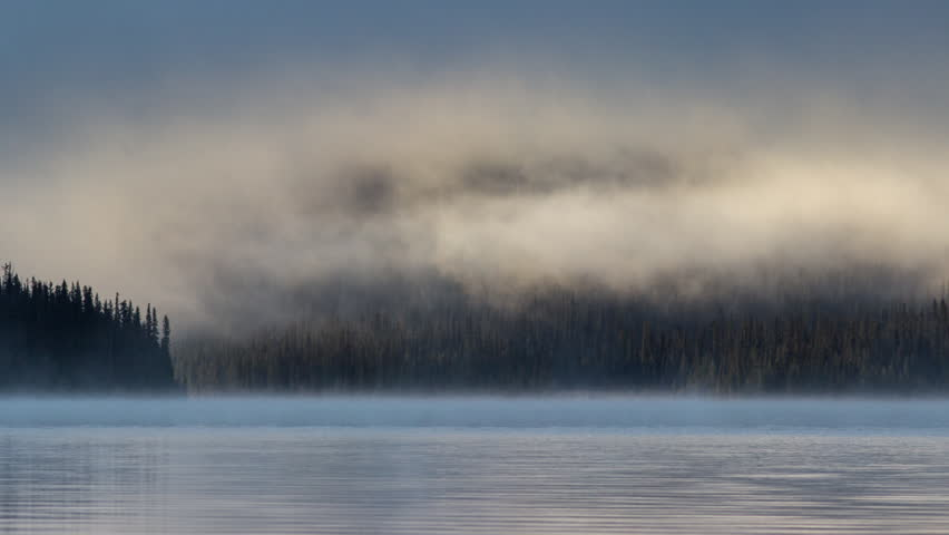 Time lapse of fog above tree line in Banff National Park